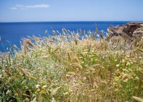 15_Kreta