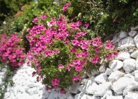 10_Kreta