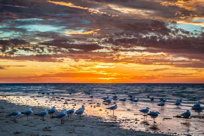 Sonnenuntergang Ningaloo Reef