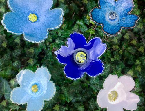 Diese Blumen blühen das ganze Jahr über!